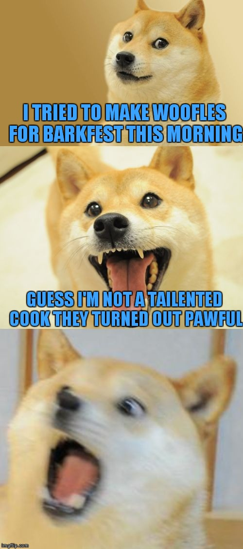 You can't Doge these puns! | I TRIED TO MAKE WOOFLES FOR BARKFEST THIS MORNING GUESS I'M NOT A TAILENTED COOK THEY TURNED OUT PAWFUL | image tagged in bad pun doge | made w/ Imgflip meme maker