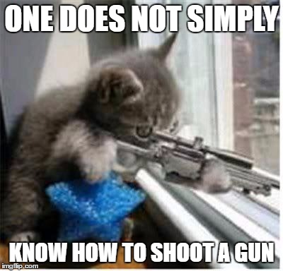 cats with guns |  ONE DOES NOT SIMPLY; KNOW HOW TO SHOOT A GUN | image tagged in cats with guns | made w/ Imgflip meme maker