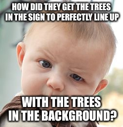 Skeptical Baby Meme | HOW DID THEY GET THE TREES IN THE SIGN TO PERFECTLY LINE UP WITH THE TREES IN THE BACKGROUND? | image tagged in memes,skeptical baby | made w/ Imgflip meme maker