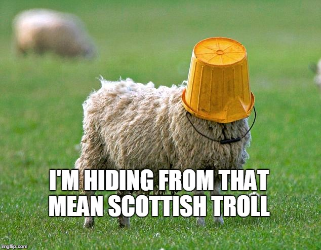 I'M HIDING FROM THAT MEAN SCOTTISH TROLL | made w/ Imgflip meme maker
