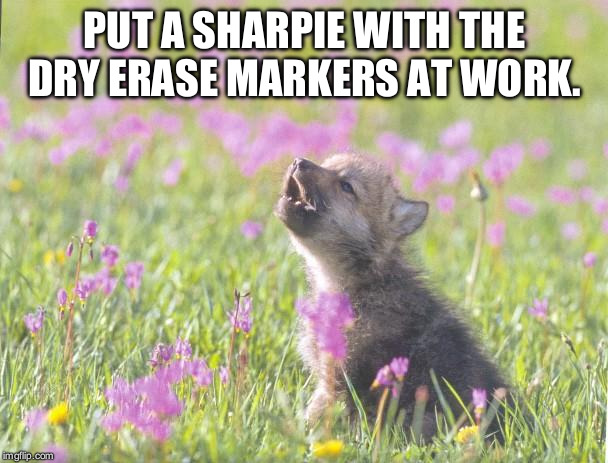 Baby Insanity Wolf | PUT A SHARPIE WITH THE DRY ERASE MARKERS AT WORK. | image tagged in memes,baby insanity wolf | made w/ Imgflip meme maker