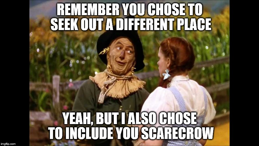 wizard of oz scarecrow | REMEMBER YOU CHOSE TO SEEK OUT A DIFFERENT PLACE YEAH, BUT I ALSO CHOSE TO INCLUDE YOU SCARECROW | image tagged in wizard of oz scarecrow | made w/ Imgflip meme maker