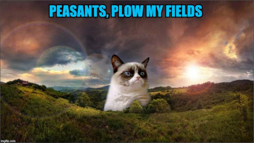 PEASANTS, PLOW MY FIELDS | made w/ Imgflip meme maker