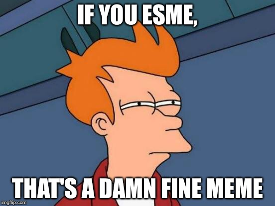 Futurama Fry Meme | IF YOU ESME, THAT'S A DAMN FINE MEME | image tagged in memes,futurama fry | made w/ Imgflip meme maker