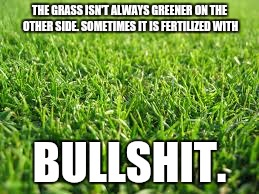 Greener grass | THE GRASS ISN'T ALWAYS GREENER ON THE OTHER SIDE.SOMETIMES IT IS FERTILIZED WITH BULLSHIT. | image tagged in greener grass | made w/ Imgflip meme maker