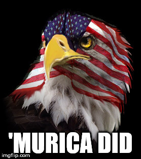 Flag Faced American Eagle | 'MURICA DID | image tagged in flag faced american eagle | made w/ Imgflip meme maker
