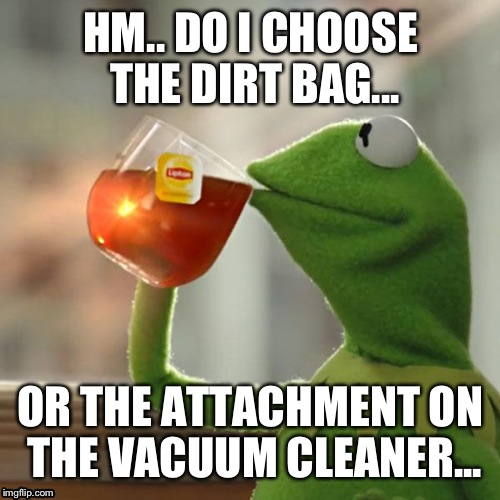 But Thats None Of My Business Meme | HM.. DO I CHOOSE THE DIRT BAG... OR THE ATTACHMENT ON THE VACUUM CLEANER... | image tagged in memes,but thats none of my business,kermit the frog | made w/ Imgflip meme maker