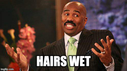 Steve Harvey Meme | HAIRS WET | image tagged in memes,steve harvey | made w/ Imgflip meme maker