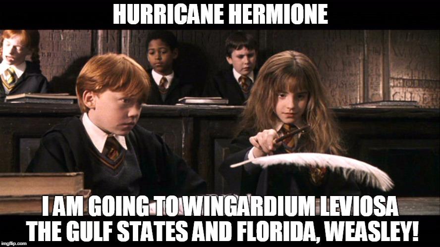 19nzon hurricane hermione memes imgflip