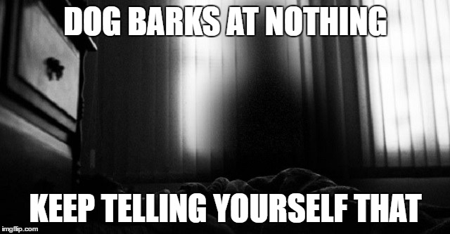 crap | DOG BARKS AT NOTHING KEEP TELLING YOURSELF THAT | image tagged in scary,night,ghost,spirit | made w/ Imgflip meme maker