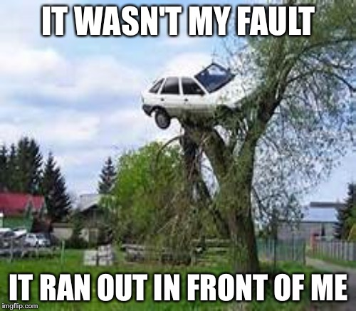 IT WASN'T MY FAULT IT RAN OUT IN FRONT OF ME | made w/ Imgflip meme maker