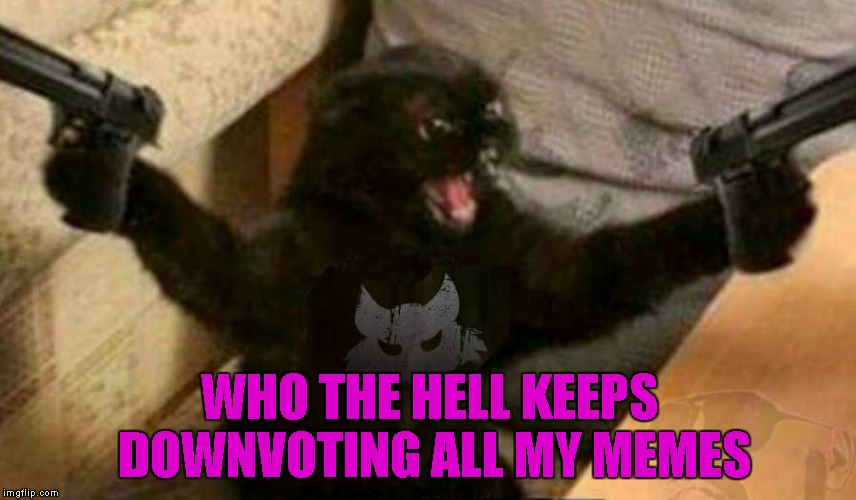 This one is for all the trolls and the troll fighters... Keep fighting the good fight! | WHO THE HELL KEEPS DOWNVOTING ALL MY MEMES | image tagged in cat with guns,memes,cats,funny,funny animals,animals | made w/ Imgflip meme maker