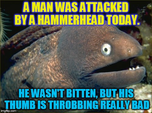 The hazards of ocean life..volume 2 | A MAN WAS ATTACKED BY A HAMMERHEAD TODAY. HE WASN'T BITTEN, BUT HIS THUMB IS THROBBING REALLY BAD | image tagged in memes,bad joke eel | made w/ Imgflip meme maker