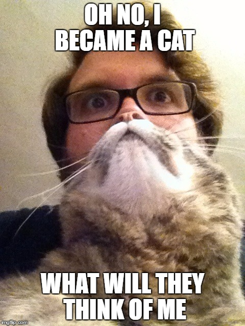 Surprised CatMan Meme | OH NO, I BECAME A CAT WHAT WILL THEY THINK OF ME | image tagged in memes,surprised catman | made w/ Imgflip meme maker