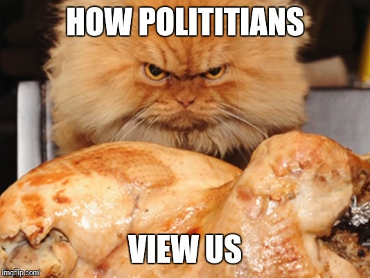 HOW POLITITIANS VIEW US | made w/ Imgflip meme maker
