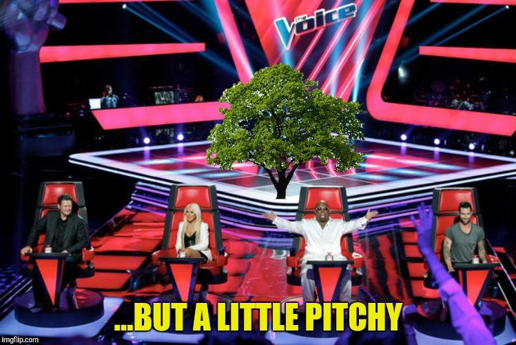 ...BUT A LITTLE PITCHY | made w/ Imgflip meme maker
