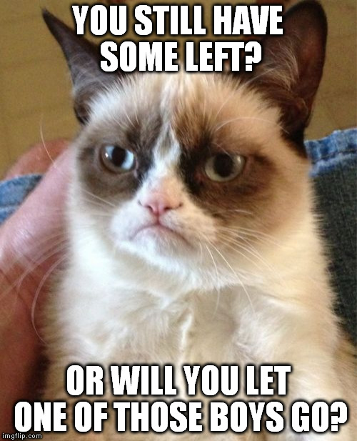 Grumpy Cat Meme | YOU STILL HAVE SOME LEFT? OR WILL YOU LET ONE OF THOSE BOYS GO? | image tagged in memes,grumpy cat | made w/ Imgflip meme maker