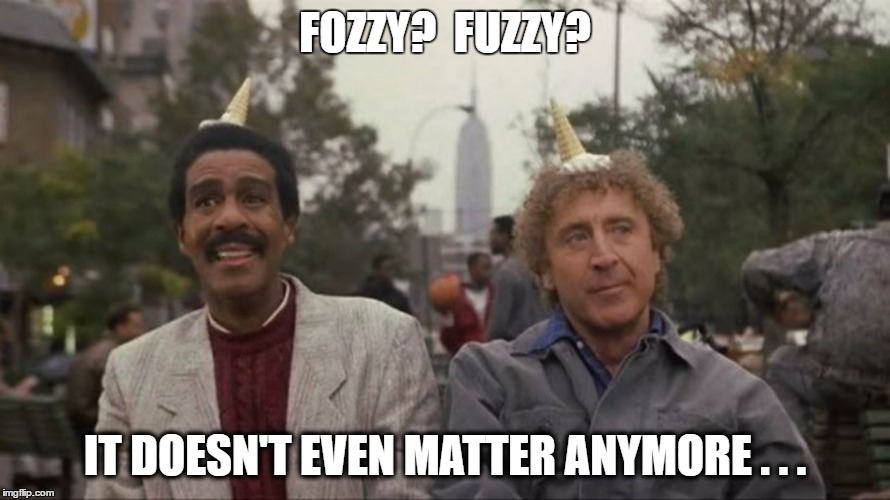 FOZZY?  FUZZY? IT DOESN'T EVEN MATTER ANYMORE . . . | made w/ Imgflip meme maker