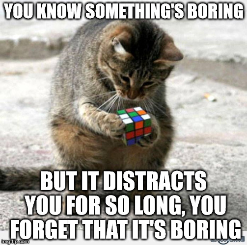 Curious Cat | YOU KNOW SOMETHING'S BORING BUT IT DISTRACTS YOU FOR SO LONG, YOU FORGET THAT IT'S BORING | image tagged in cat,curious,rubik cube | made w/ Imgflip meme maker