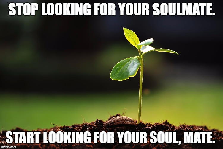 Soulmate, 2016 | STOP LOOKING FOR YOUR SOULMATE. START LOOKING FOR YOUR SOUL, MATE. | image tagged in inspirational,happiness,soulmates,zen,family,seedling 2016 | made w/ Imgflip meme maker