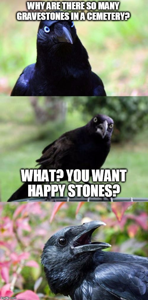 DARK HUMOR | WHY ARE THERE SO MANY GRAVESTONES IN A CEMETERY? WHAT? YOU WANT HAPPY STONES? | image tagged in bad pun crow,funny,funny meme,cemeteries,death | made w/ Imgflip meme maker