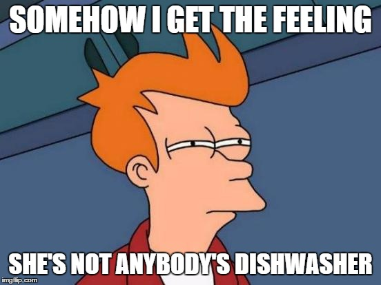 Futurama Fry Meme | SOMEHOW I GET THE FEELING SHE'S NOT ANYBODY'S DISHWASHER | image tagged in memes,futurama fry | made w/ Imgflip meme maker