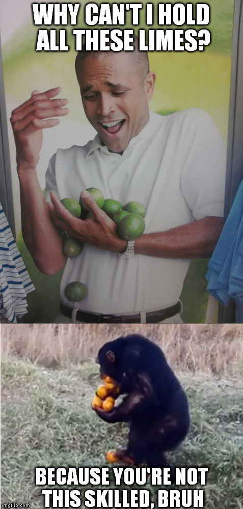 Courtesy of one of the funniest videos to pass across my social media today |  WHY CAN'T I HOLD ALL THESE LIMES? BECAUSE YOU'RE NOT THIS SKILLED, BRUH | image tagged in memes,why can't i hold all these limes,limes,monkey,orange,skills | made w/ Imgflip meme maker