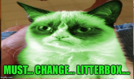 MUST... CHANGE... LITTERBOX.... | made w/ Imgflip meme maker