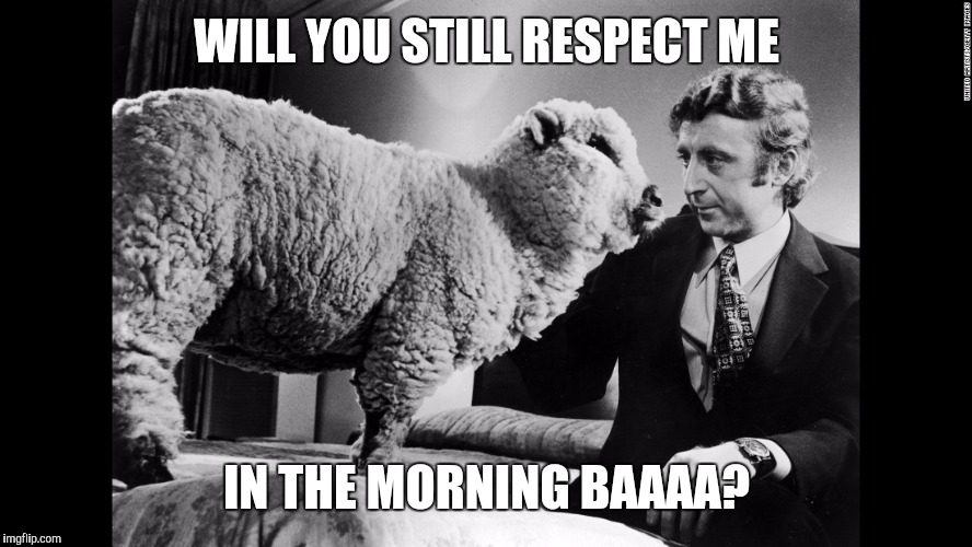 WILL YOU STILL RESPECT ME IN THE MORNING BAAAA? | made w/ Imgflip meme maker