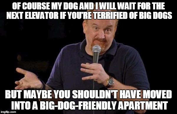 Louis ck but maybe | OF COURSE MY DOG AND I WILL WAIT FOR THE NEXT ELEVATOR IF YOU'RE TERRIFIED OF BIG DOGS BUT MAYBE YOU SHOULDN'T HAVE MOVED INTO A BIG-DOG-FRI | image tagged in louis ck but maybe,AdviceAnimals | made w/ Imgflip meme maker