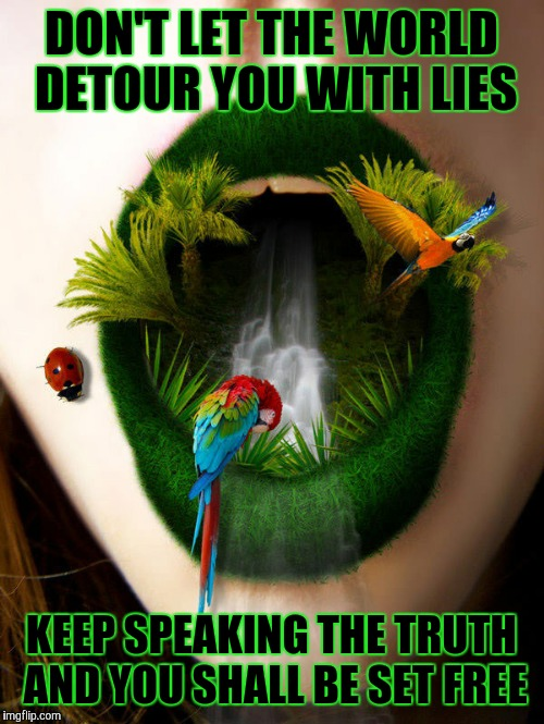 DON'T LET THE WORLD DETOUR YOU WITH LIES KEEP SPEAKING THE TRUTH AND YOU SHALL BE SET FREE | image tagged in speak | made w/ Imgflip meme maker