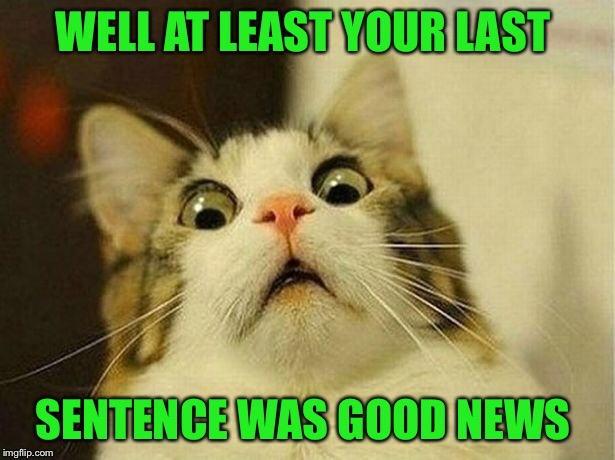 WELL AT LEAST YOUR LAST SENTENCE WAS GOOD NEWS | made w/ Imgflip meme maker