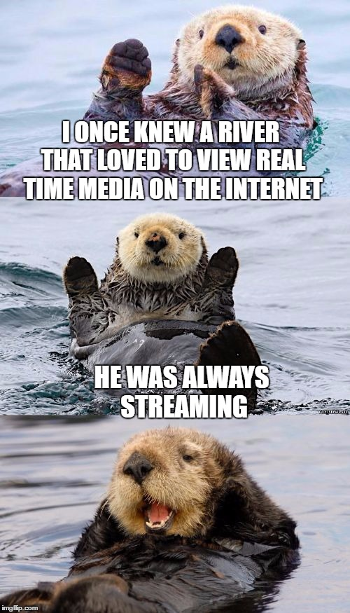 My otter connection is dial up |  I ONCE KNEW A RIVER THAT LOVED TO VIEW REAL TIME MEDIA ON THE INTERNET; HE WAS ALWAYS STREAMING | image tagged in bad pun otter,memes,bad pun,otter,internet,streaming | made w/ Imgflip meme maker