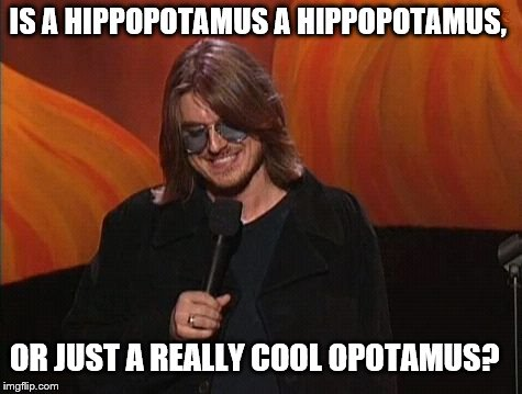 Mitch Hedberg | IS A HIPPOPOTAMUS A HIPPOPOTAMUS, OR JUST A REALLY COOL OPOTAMUS? | image tagged in mitch hedberg | made w/ Imgflip meme maker