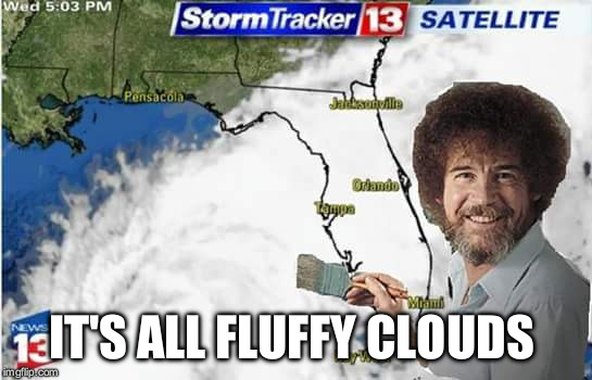Bob Ross |  IT'S ALL FLUFFY CLOUDS | image tagged in hurricane | made w/ Imgflip meme maker