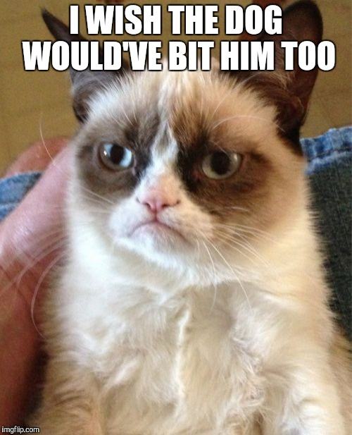 Grumpy Cat Meme | I WISH THE DOG WOULD'VE BIT HIM TOO | image tagged in memes,grumpy cat | made w/ Imgflip meme maker