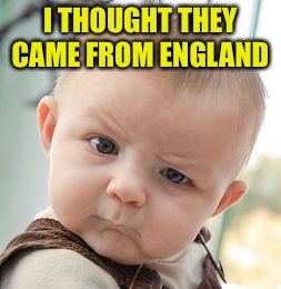 Skeptical Baby Meme | I THOUGHT THEY CAME FROM ENGLAND | image tagged in memes,skeptical baby | made w/ Imgflip meme maker