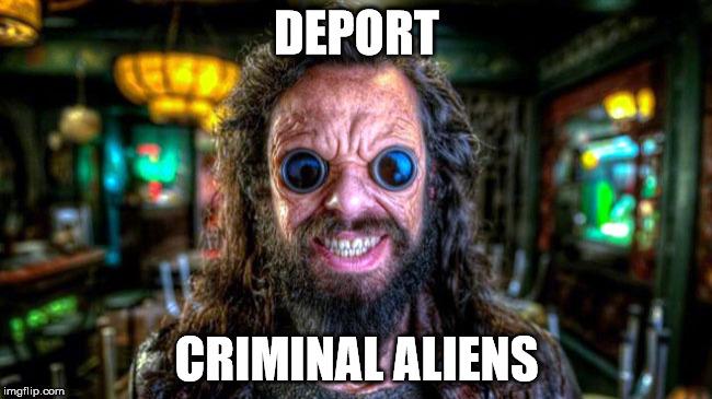 19ufjs deport criminal aliens imgflip