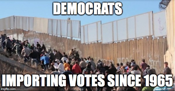 The Real Voter Fraud |  DEMOCRATS; IMPORTING VOTES SINCE 1965 | image tagged in illegal immigrants,voter fraud,trump,neverhillary,build a wall | made w/ Imgflip meme maker