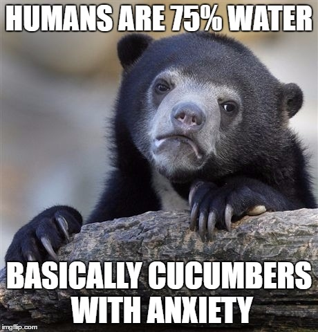 Confession Bear Meme | HUMANS ARE 75% WATER BASICALLY CUCUMBERS WITH ANXIETY | image tagged in memes,confession bear | made w/ Imgflip meme maker