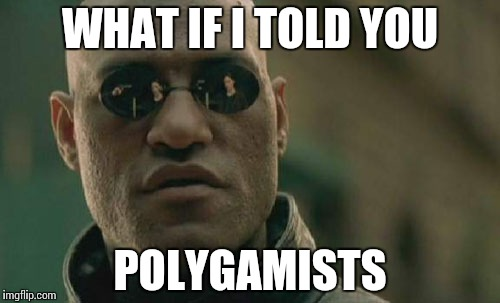 Matrix Morpheus Meme | WHAT IF I TOLD YOU POLYGAMISTS | image tagged in memes,matrix morpheus | made w/ Imgflip meme maker