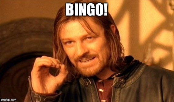 One Does Not Simply Meme | BINGO! | image tagged in memes,one does not simply | made w/ Imgflip meme maker