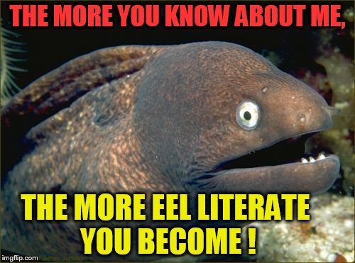 Bad Joke Eel Meme | THE MORE YOU KNOW ABOUT ME, THE MORE EEL LITERATE YOU BECOME ! | image tagged in memes,bad joke eel | made w/ Imgflip meme maker