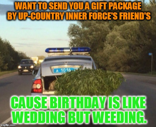 -Saint P Police Departament on duty. | WANT TO SEND YOU A GIFT PACKAGE BY UP-COUNTRY INNER FORCE'S FRIEND'S CAUSE BIRTHDAY IS LIKE WEDDING BUT WEEDING. | image tagged in weed,police,police brutality,scumbag american police officer,stoned | made w/ Imgflip meme maker