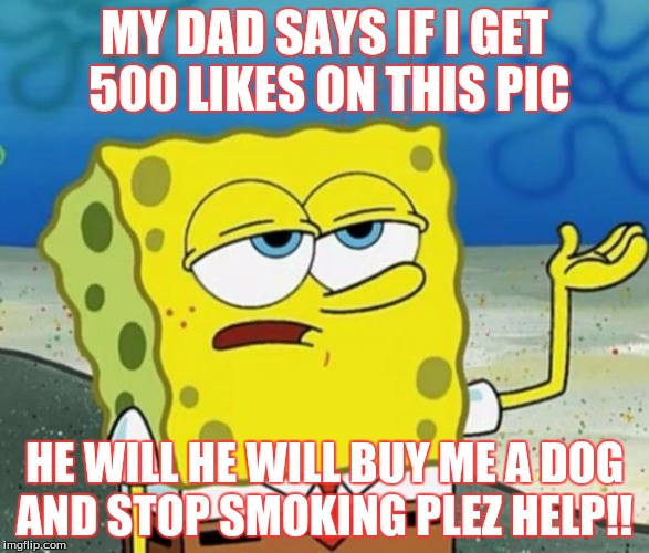 Tough Guy Sponge Bob | MY DAD SAYS IF I GET 500 LIKES ON THIS PIC HE WILL HE WILL BUY ME A DOG AND STOP SMOKING PLEZ HELP!! | image tagged in tough guy sponge bob | made w/ Imgflip meme maker