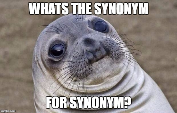 Awkward Moment Sealion Meme | WHATS THE SYNONYM FOR SYNONYM? | image tagged in memes,awkward moment sealion | made w/ Imgflip meme maker