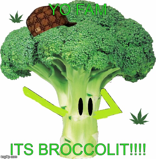 Broccolit | YO FAM ITS BROCCOLIT!!!! | image tagged in broccolit,scumbag,memes,dank meme,dank,broccoli | made w/ Imgflip meme maker