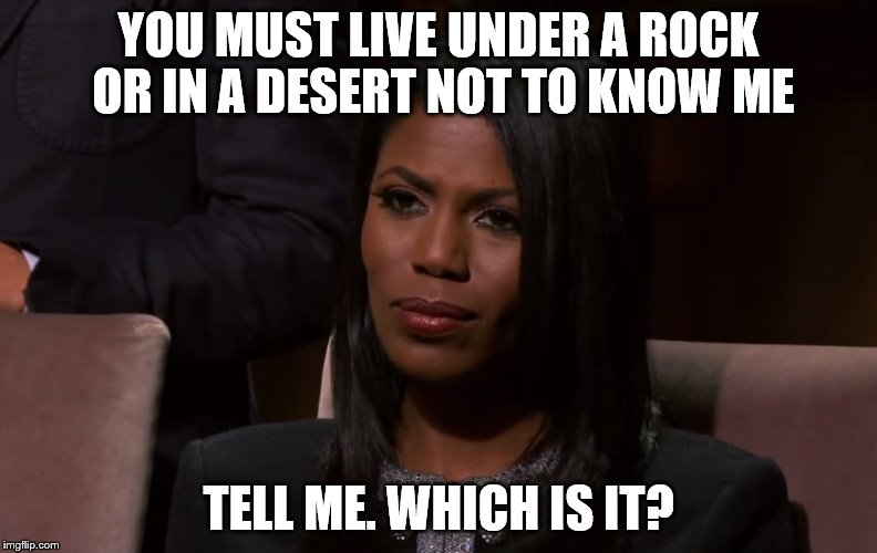 YOU MUST LIVE UNDER A ROCK OR IN A DESERT NOT TO KNOW ME TELL ME. WHICH IS IT? | made w/ Imgflip meme maker