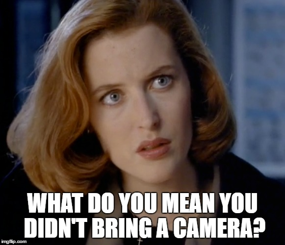 Investigating paranormal activity? No need to bring a camera... |  WHAT DO YOU MEAN YOU DIDN'T BRING A CAMERA? | image tagged in memes,scully,x files,x-files,tv,aliens | made w/ Imgflip meme maker
