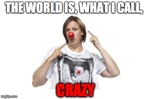 THE WORLD IS, WHAT I CALL, CRAZY | image tagged in miranda hart | made w/ Imgflip meme maker